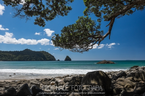 MPYH_2017_New Zealand_Wainuototo Beach_0006