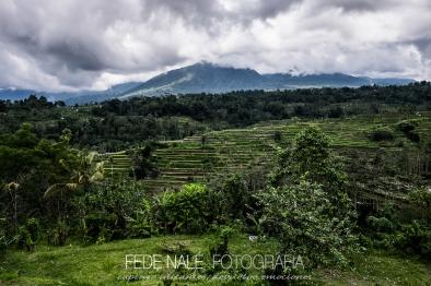 MPYH_2017_Indonesia_Viaje a Pemuteran_0003